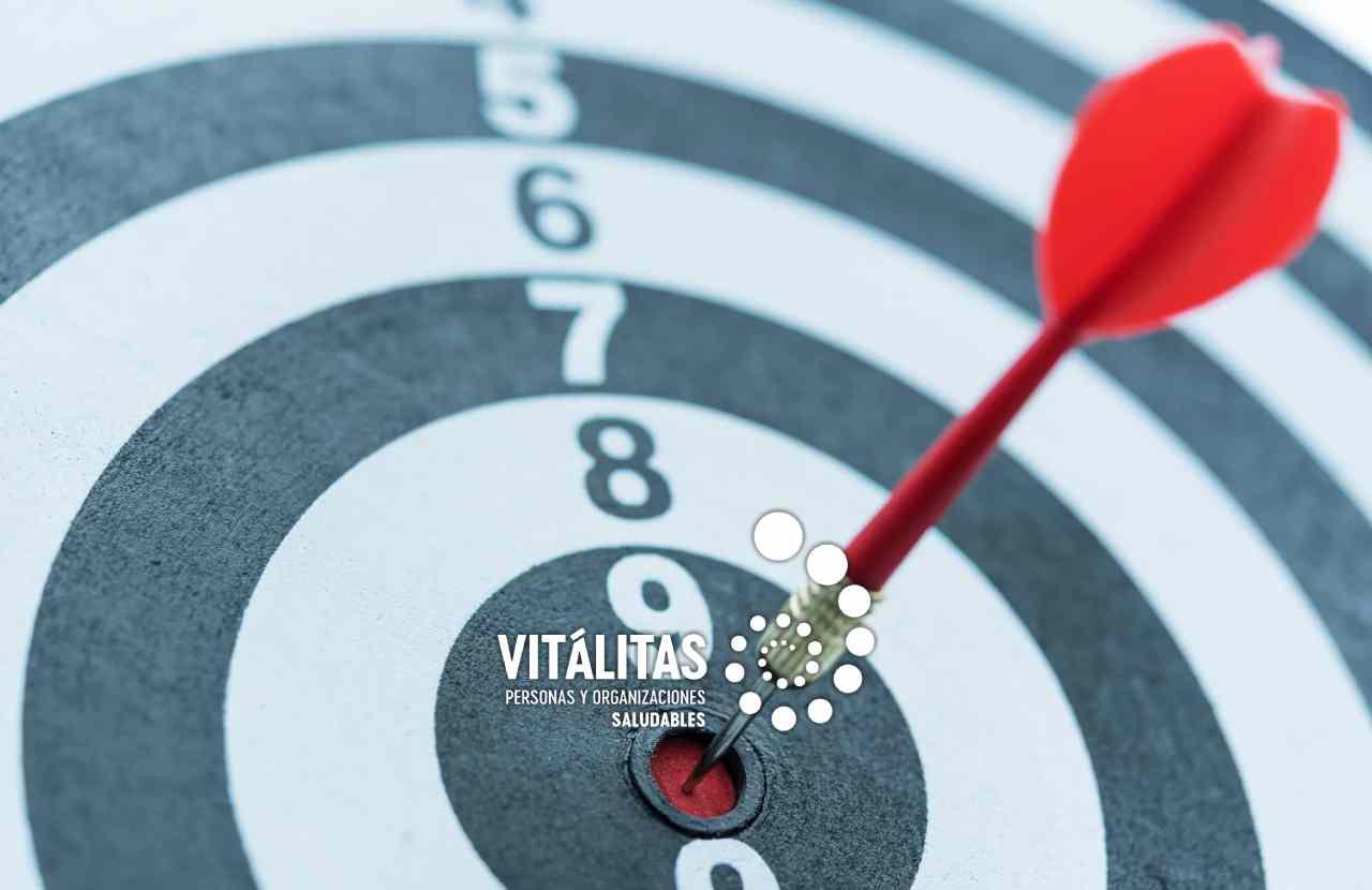 VITÁLITAS Cultura Organizacional Preventiva en materia de Seguridad y Salud Laboral